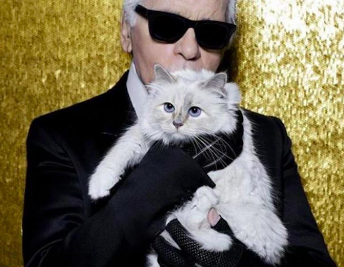 Karl Lagerfeld Muore La Birmana Choupette Eredita Parte Dellimpero